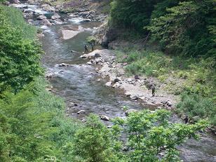 和歌山県かつらぎ町の鮎釣り